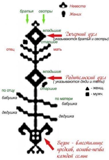 Пример Родового Древа